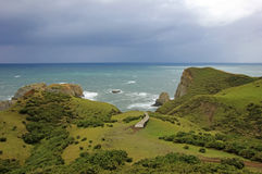 Küstenansicht Muelle De Las Almas, Ozean im Hintergrund, Chiloe-Insel, Chile lizenzfreie stockfotografie