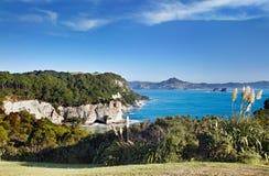 Küstenansicht, Neuseeland lizenzfreies stockfoto