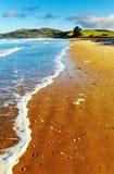 Küstenansicht, Neuseeland Stockfotos