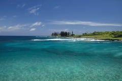 Küstenansicht von Hamoa-Strand, Hana, Maui, Hawaii Lizenzfreie Stockfotos