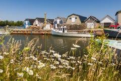 Küstenansicht von Prinzen Edward Island Canada Stockbild