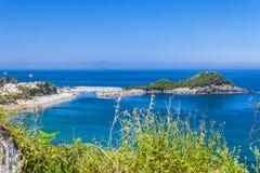 Küstenblume Lizenzfreie Stockfotografie