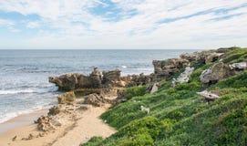 Küstenkalkstein in Pinguin-Insel: West-Australien Stockbild