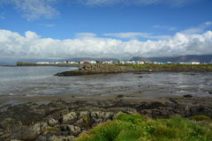 Küstenlandschaft in Island Stockbild