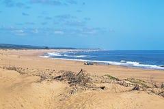 Küstenlandschaft von Dünen und Treibholz und blauer Himmel stockbilder