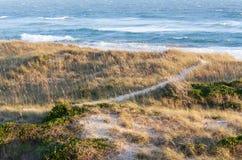 Küstenlandschaftsland-und -seehintergrund stockfoto