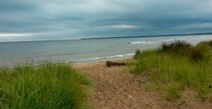 Küstenlinie auf Michigansee Stockbild