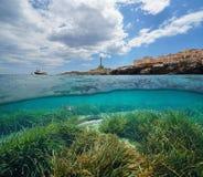 Küstenlinie bei Cabo de Palos in Spanien und in den Fischen mit dem Seegras Unterwasser lizenzfreies stockbild