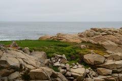 Küstenlinie entlang dem 17 Meilen-Antrieb Stockfoto