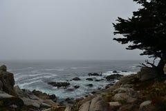 Küstenlinie entlang dem 17 Meilen-Antrieb Stockbilder