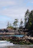 Küstenlinie entlang dem wilden pacif Lizenzfreies Stockbild
