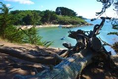 Küstenlinie, Küste und Strand der Inselzusatzmönche in Bretagne im Morbihan La Frankreich lizenzfreies stockbild