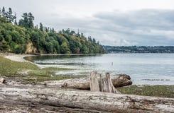 Küstenlinie am Salzwasser-Nationalpark stockbilder