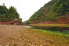 Küstennebel und Felsen bei Ebbe stockbild