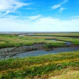Küstensalz-Sumpf Stockfoto