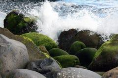 Küstensteine stockbild