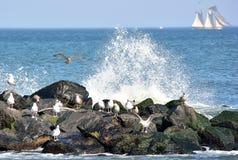 Küstenszene Lizenzfreies Stockbild