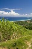 Küstenszene Barbados Stockfotos