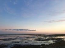 Küstenvorland bei Sonnenuntergang mit Felsen und Meerespflanze Rosa Reflexionen lizenzfreies stockbild
