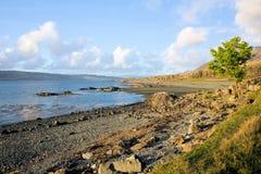 Küstenvorland von Lochna Keal Lizenzfreie Stockbilder
