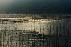 Küstenwasserproduktion Stockfotografie
