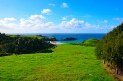 Küstenweg in der großen Düneninsel lizenzfreie stockbilder