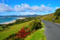 Küstenweg in der großen Düneninsel lizenzfreies stockfoto