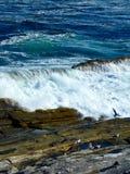 Küstenwelle weg von Maine Stockfotografie
