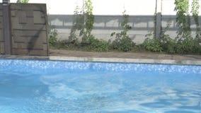 kąpać dziewczyna basenu zdjęcie wideo