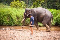Kąpać się elefant mahout, Khao Sok sanktuarium, Tajlandia Fotografia Stock