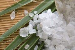 kąpać się liść palmy sól Obrazy Stock