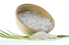 kąpielowa liść palmy sól Obraz Stock