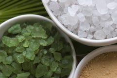 kąpielowa liść palmy sól Zdjęcia Royalty Free