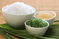 kąpielowa liść palmy sól Obrazy Stock