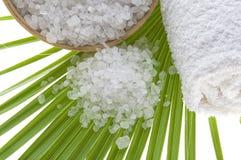 kąpielowa liść palmy sól Fotografia Royalty Free