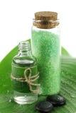 kąpielowa liść palmy sól Zdjęcie Stock