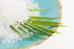 kąpielowa liść palmy sól Obraz Royalty Free
