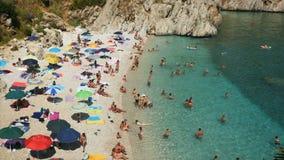Kąpielowicze na plażowym mieć zabawę w krystalicznym wodnym materiale filmowym 4k zbiory wideo