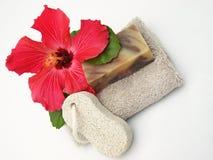 kąpielowy piękno Fotografia Stock