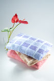 kąpielowy ręcznik Zdjęcia Royalty Free