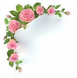 Kąt z różami royalty ilustracja