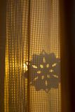 kędzierzawy cień Fotografia Stock