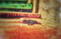 Kędziorek i klucz obrazy stock