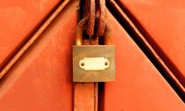 Kędziorek na ośniedziałej żelaznej bramie Obraz Royalty Free