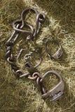 Kędziorka łańcuchu szakle zdjęcia stock