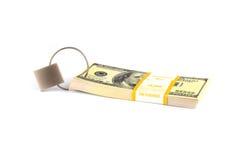kędziorka pieniądze Zdjęcia Stock