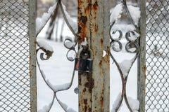 Kłódka zamyka metal bramę w zimie Zdjęcia Stock