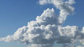 Kłębić się cumulus chmury zbiory wideo