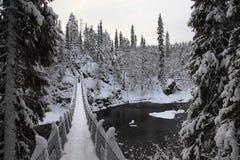 Kładki Oulanka park narodowy. Finlandia. obraz royalty free