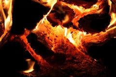 kłody spalić Zdjęcia Stock